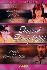 Watch Free Days of Being Wild (1990)